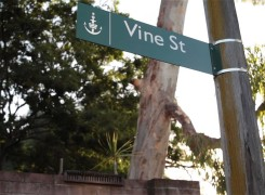 Five years on, Dom West announces long-awaited Vine St Chapter II with preview trailer